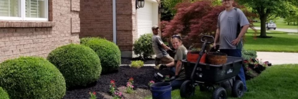 We treat your yard as if it were our own.