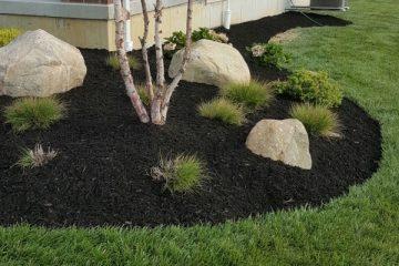 Mulching / Topsoil Installation